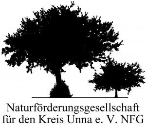 LogoNFG
